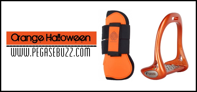 www.pegasebuzz.com | Equestrian Fashion : Orange Halloween