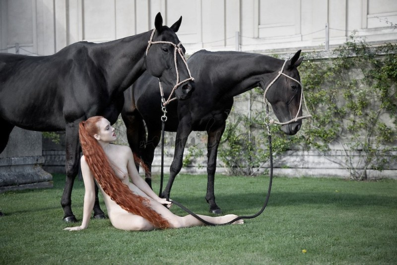 www.pegasebuzz.com   Luru Wei : Bare All Nude Horses