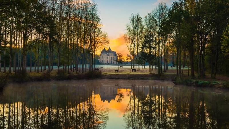 www.pegasebuzz.com   Dream Barn : Equimov présente le Domaine de Brandois.