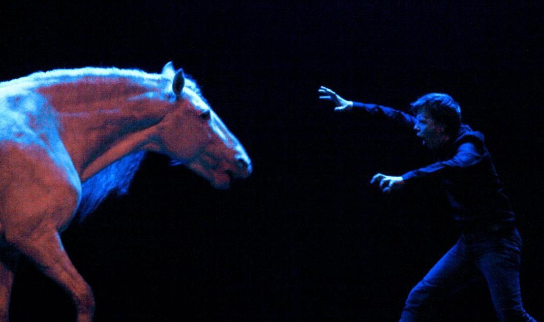 www.pegasebuzz.com | Alex Lutz et son cheval Nilo à L'Olympia