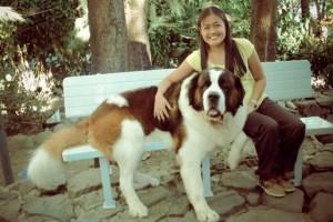 Doglas Baguio Dog – Up Close and Personal