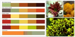 Howling Enjoy That Fall Fall Colors Palettes Pennock Floral Autumn Color Palette Code Autumn Color Palette Swatches