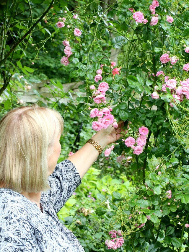 Foraging-For-Flowers