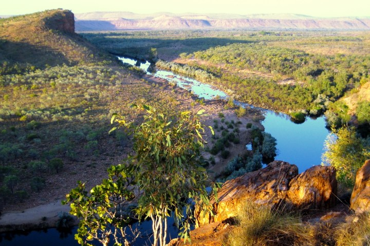 Caption here about northern australia being ecologically unique