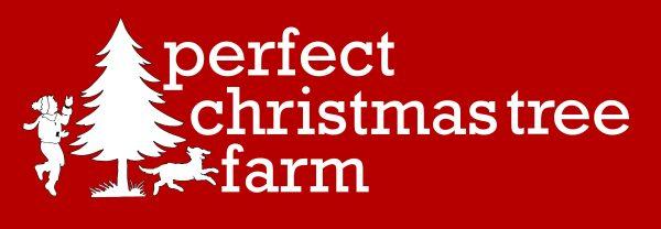 3-2 Christmas Tree Logo Med Wider 2