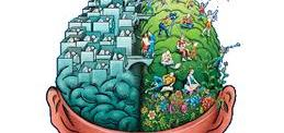 adiccion cerebro drogas prevencion