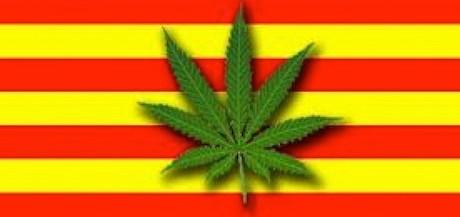 catalunya cannabis