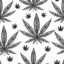 fad estudio drogas