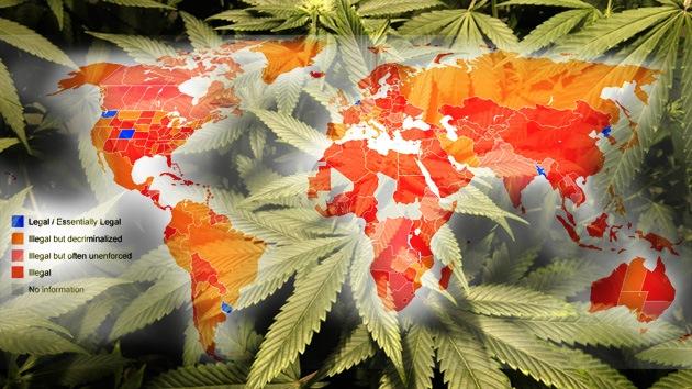 mapamundi cannabis