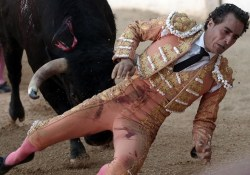 EDITORS NOTE  Graphic content   Spanish matador Ivan Fandino is impaled by a Baltasar Iban bull during a bullfight at the Corrida des Fetes on June 17  2017 in Aire sur Adour  southwestern France   Spanish matador Ivan Fandino died after being impaled by a Baltasar Iban bull during a bullfight in Aire sur Adour  southwestern France  during the Corrida des Fetes     AFP PHOTO   IROZ GAIZKA