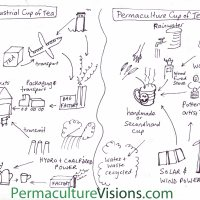 Make Your Permaculture Cup of Tea