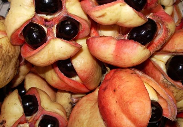 buah ackee
