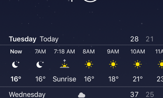I Guess I Found Winter