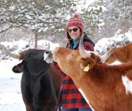 Pet Angel Irina and cows