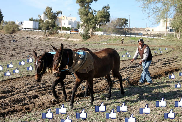 Like Farmers Profiting By Hosting Stolen Photos on Facebook likefarmer
