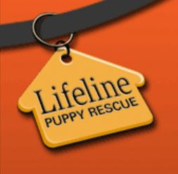 LifeLine Puppy Rescue