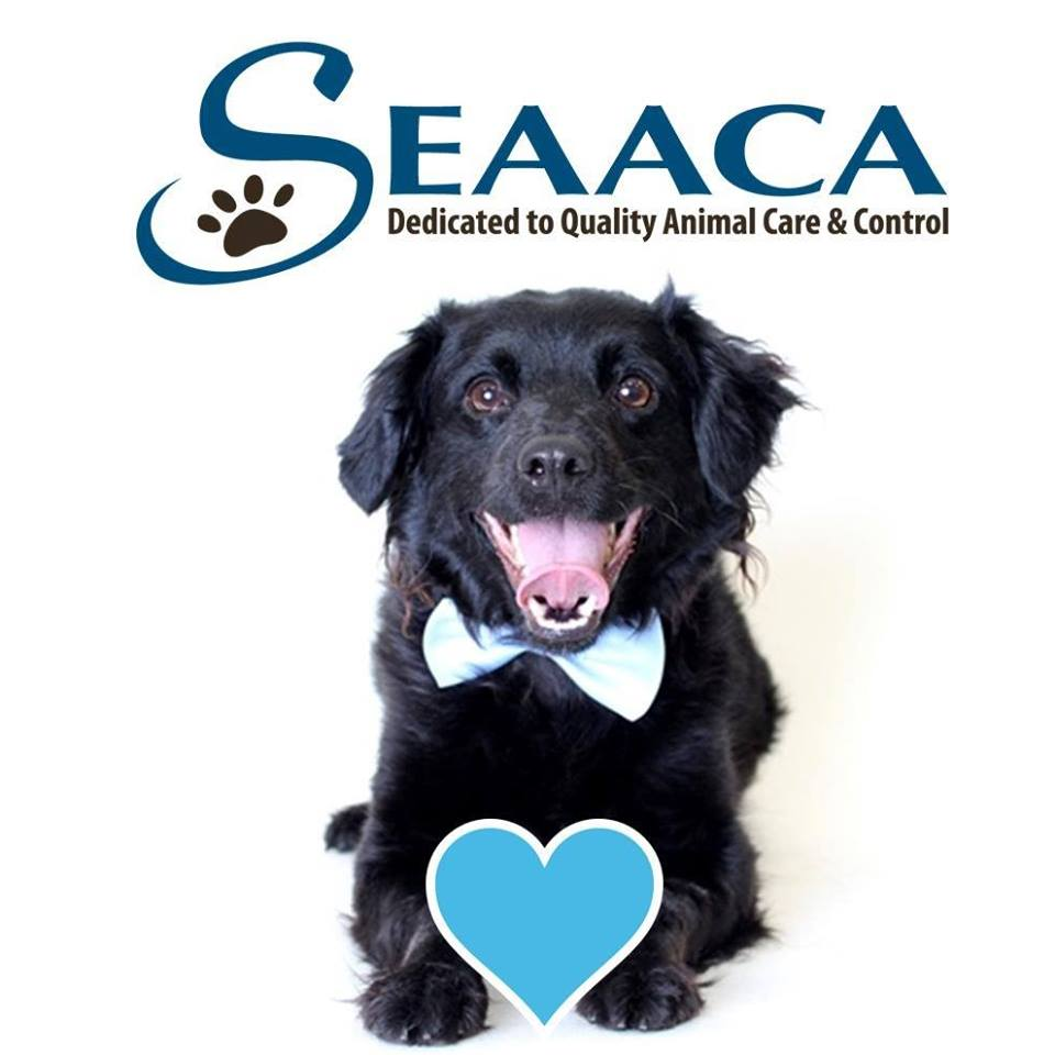 Southeast Area Animal Control Authority (SEAACA)