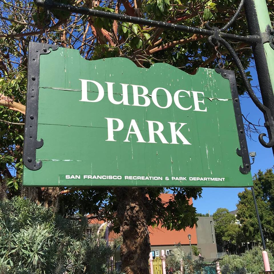 Duboce Park Dog Play Area