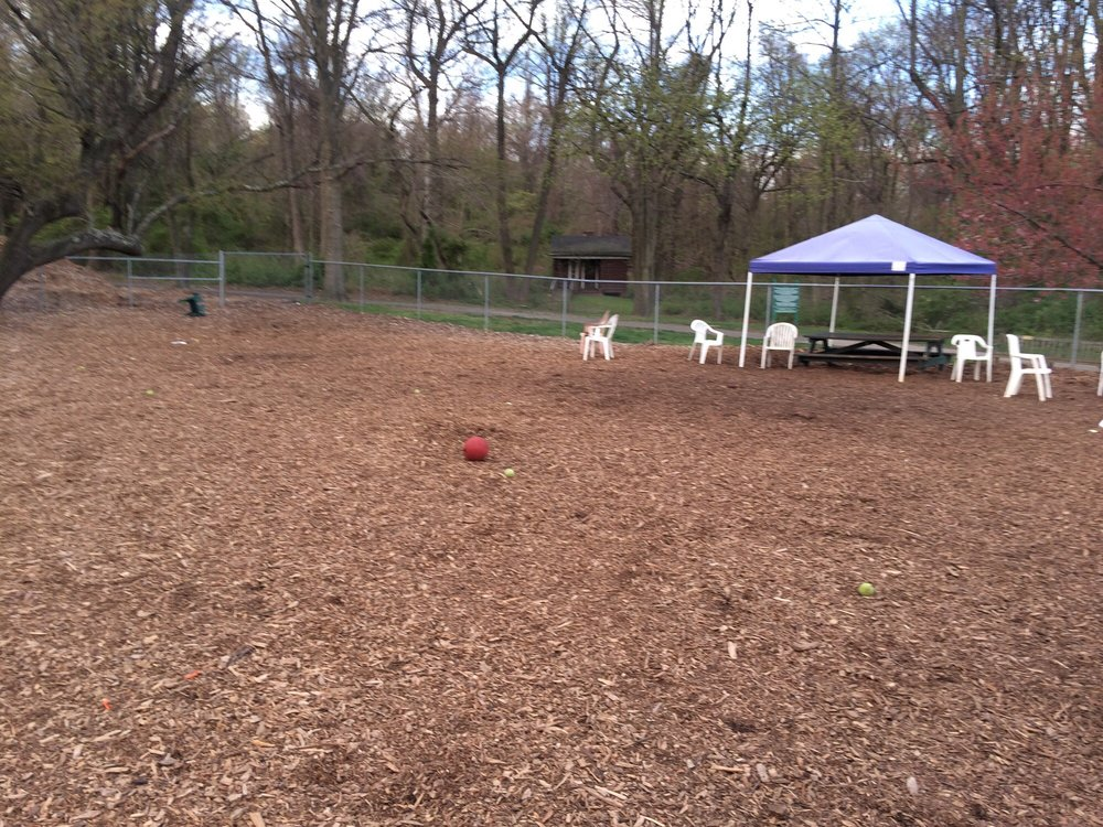 Christopher Morley Park Dog Run