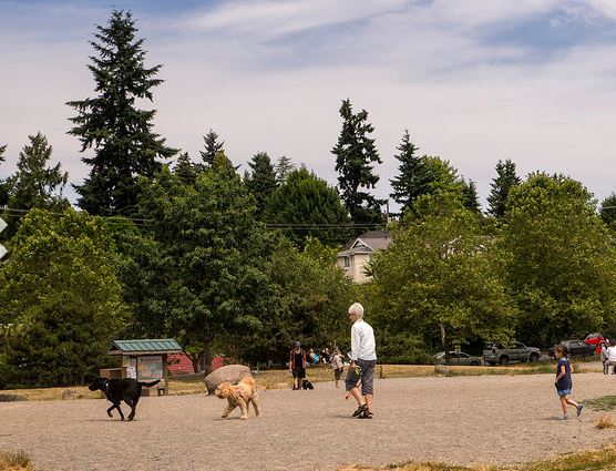 Genesee Park and Playfield Off-Leash Area