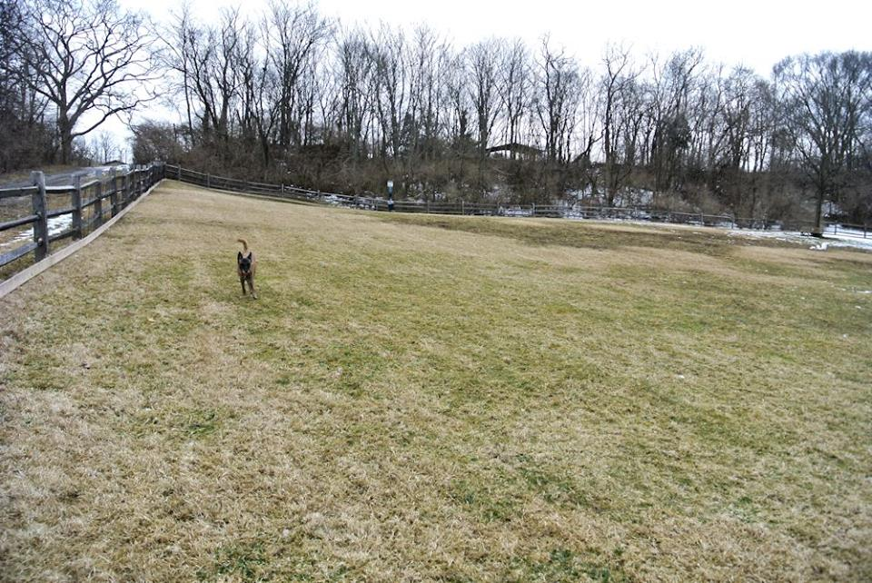 Harrison Ohio Dog Park