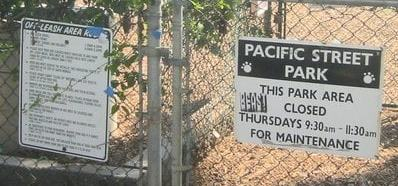 Pacific Street Dog Park