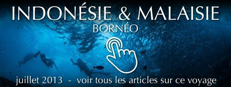 Voyage en Indonésie et Malaisie : Bornéo - juillet 2013