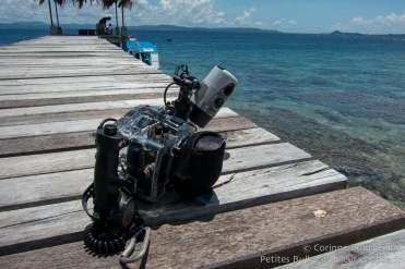 Mon reflex Canon Eos 7D dans son caisson Ikelite. Bangka Island, Sulawesi, Indonésie. Mars 2013.