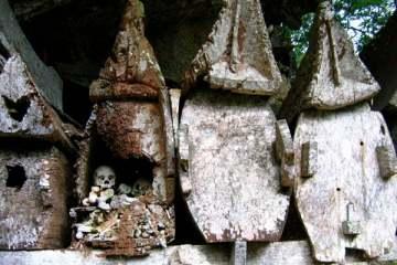 Ket'e Kesu : les tombes anciennes en bois laissent voir les ossements qu'elles renferment. Sulawesi, juillet 2007.