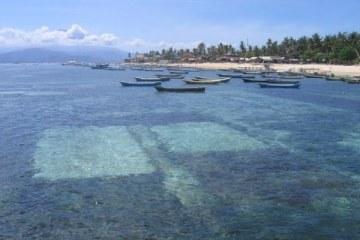 Champs d'algues dans l'anse de Jungut Batu. Nusa Lembogan, Bali. Juillet 2008.