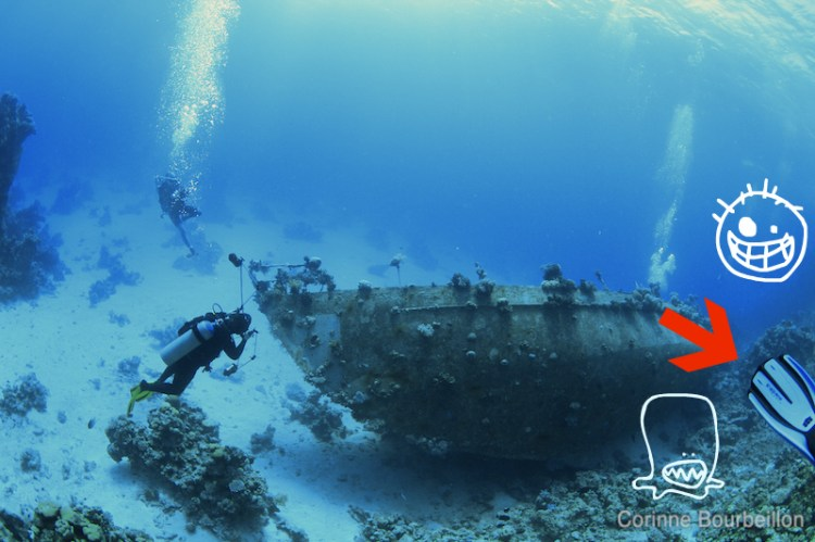 Fail !... Plongée en Mer Rouge. Hamata, Égypte, novembre 2011.