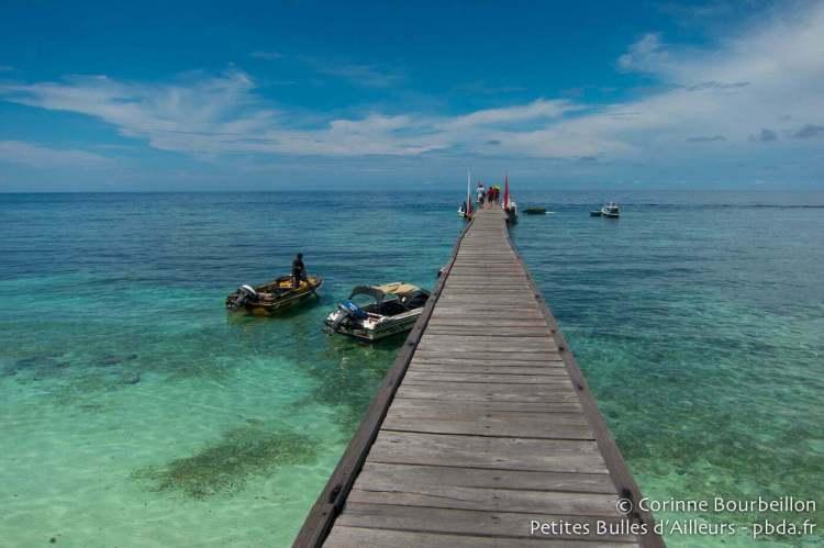 Le ponton de Kakaban. Bornéo, Indonésie. Juillet 2013.