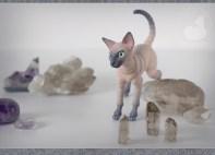 cats_stones_07