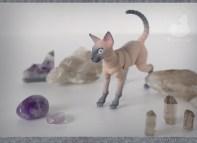 cats_stones_08