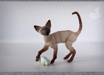 cats_stones_13