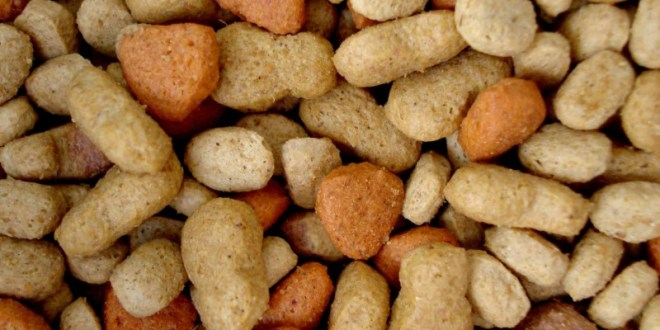 The Current State of the Pet Food Market