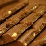 chocolate theobromine dogs