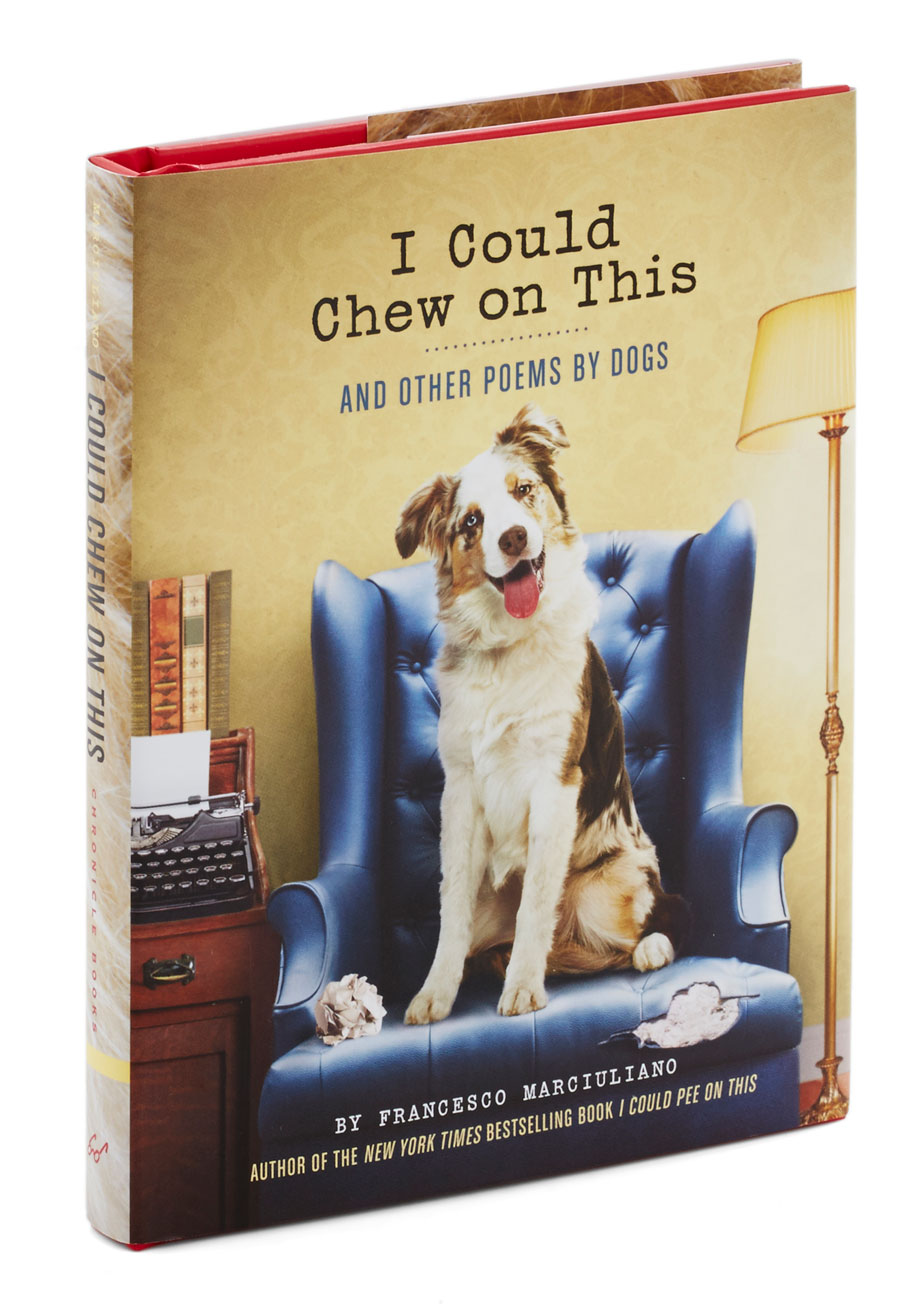 Fullsize Of Poems About Dogs