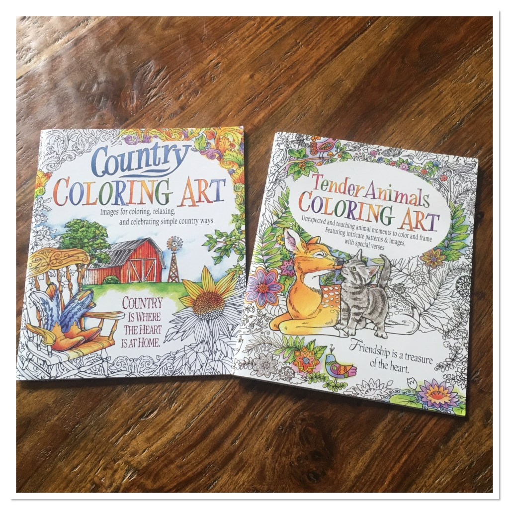 Oriental Trading Company Adult Coloring Books