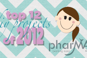 Top 12 Craft Projects of 2012