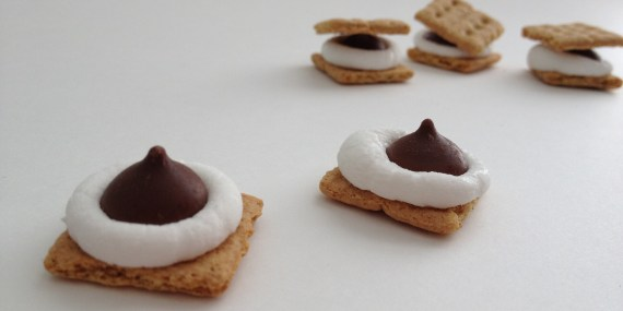 How Micro S'Mores will change your life
