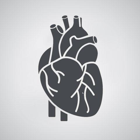 Cardiologie et maladies cardiovasculaires