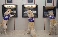 Банкомат поможет