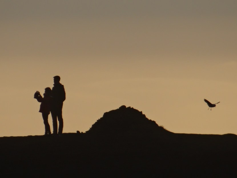 South Coast Iceland selfie couple in shadow