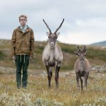 Philip kanwischer photography Sweden taking a stand reindeer caribou