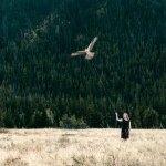 Philip kanwischer photography osprey flying chloe kinsella photo manipulation