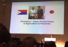 inverted Philippine flag at Japan