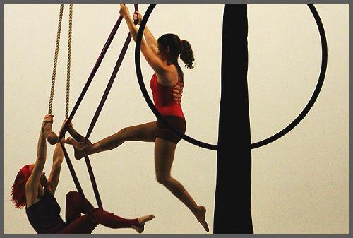Loop (Tangle Movement Arts)