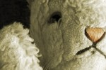 WHITE RABBIT, RED RABBIT (Nassim Soleimanpour, performed by Mary Lee Bednarek): Fringe Review 31
