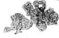 Fringe in Sketch: TIAN WEN (Hua Hua Zhang's Visual Expressions)